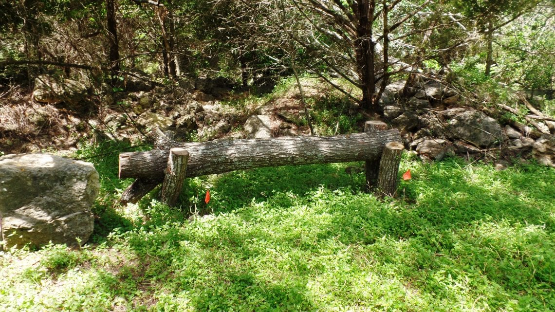 Log Bench in Grass on the Healing Trail