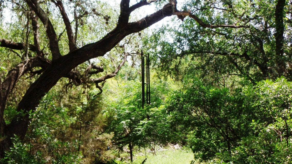Wind Chimes Hang from a Tree on the Healing Trail